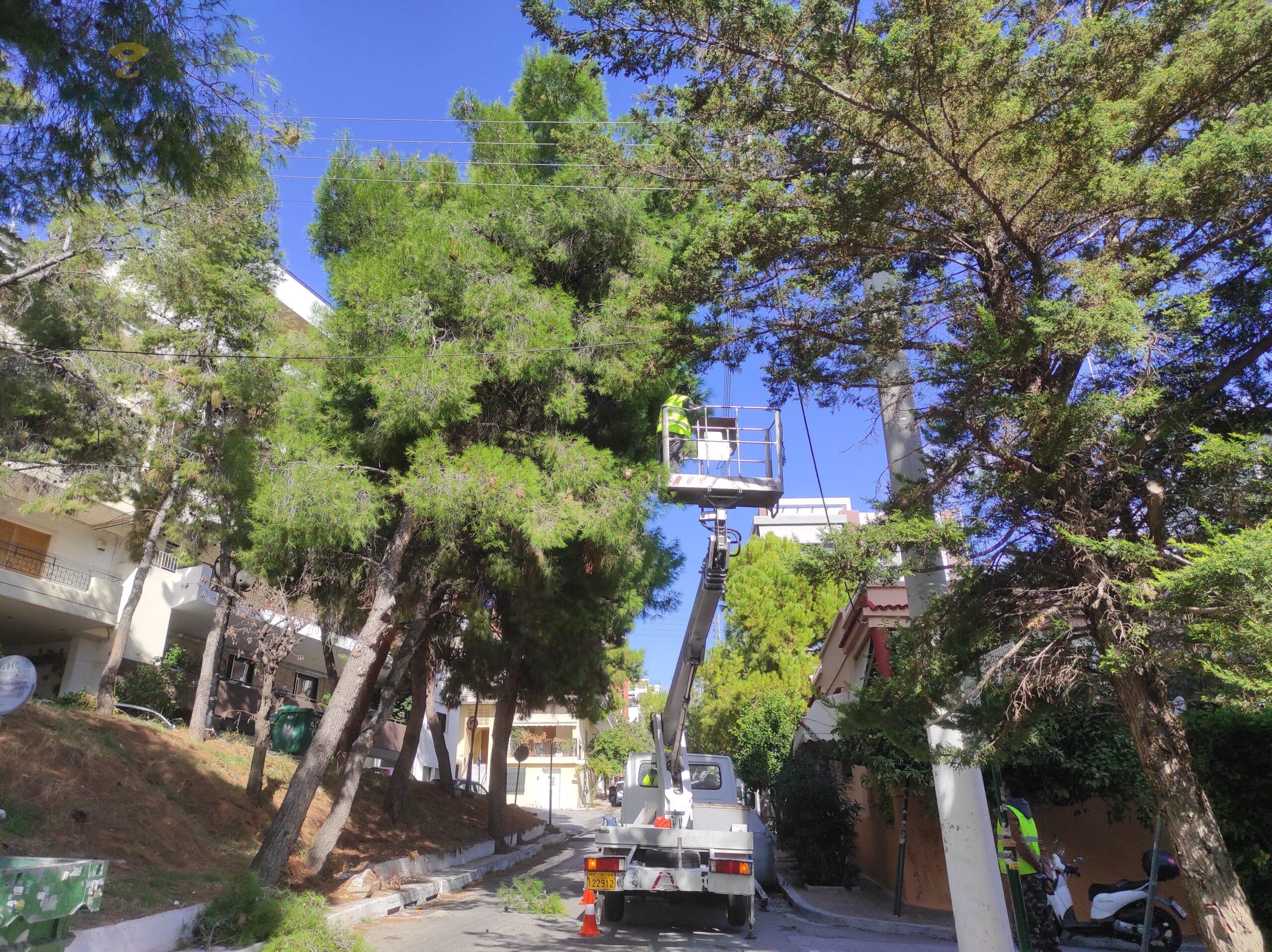 κοπή κλάδεμα υψηλών δέντρων με καλαθοφόρο γερανό