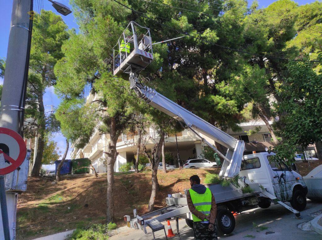 Ποσο κοστιζει η κοπη δεντρων κλάδεμα ψηλών δέντρου με καλαθοφόρο γερανό κόψιμο